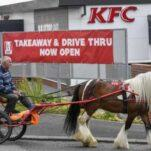 KFC отказался обслуживать мужчину на конной повозке. Зато «Макдоналдс» согласился